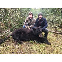 DB OUTFITTING 5-Day Spring Bear Hunt in Central British Columbia for 2 Hunters (1-adult & 1-youth)
