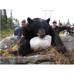 DEEP COUNTRY LODGE 5-Star 5-Day Trophy 2 Tag Black Bear Hunt in St. Johns Newfoundland, Canada