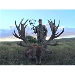 ALGAR SAFARIS 5-Day Argentina Big Game Hunt for One Hunter including 1 Red Stag up to 320 SCI Points