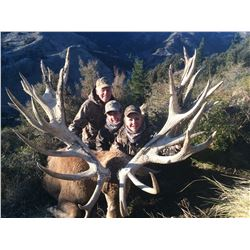 SPEY CREEK TROPHY HUNTING 5-Day Stag Hunt for 2 Hunters in New Zealand
