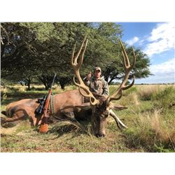 PACO RIESTRA 4-Day Red Stag Hunt for 2 to 8 Hunters in Beautiful Argentina.