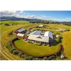 KAWEKA HUNTING NEW ZEALAND  FIVE-DAY 1 X 1 RED STAG HUNT