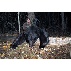 WED-03 Black Bear Hunt, British Columbia
