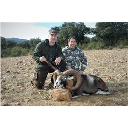 WED-12 Iberian Mouflon Hunt, Spain