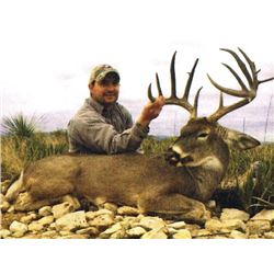 THD-01 Whitetail Deer Hunt, Mexico