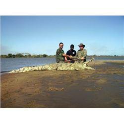 THD-09 Crocodile Safari, Mozambique