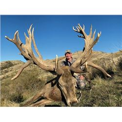 THD-16 Red Stag Hunt, New Zealand