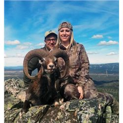 THD-22 Red Deer, Mouflon, or Fallow Deer Hunt (Hunter's Choice), Spain