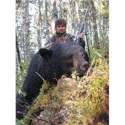 THD-24 Black Bear Hunt for Two Bears, Newfoundland