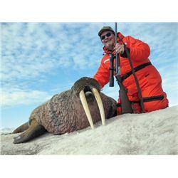 FB-14 Atlantic Walrus Hunt, Nunavut