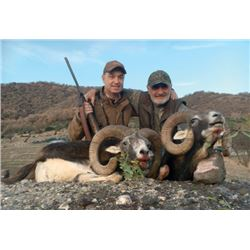 FB-15 European Mouflon Hunt, Macedonia