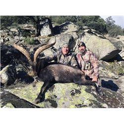 SA-12 Beceite Ibex Hunt, Spain