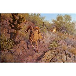 SA-37 Original Oil Painting by Hayden Lambson