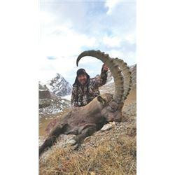 SB-08 Mid-Asian Ibex Hunt, Kyrgyzstan or Tajikistan