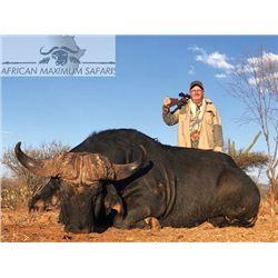 SB-14 Cape Buffalo Hunt, South Africa