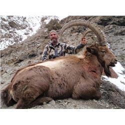 SB-16 Himalayan Ibex Hunt, Pakistan