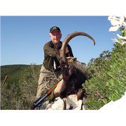 SB-18 Kri-Kri Ibex and Mouflon Combo Hunt, Sapientza Island, Greece
