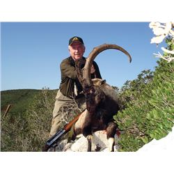 SB-18 Kri-Kri Ibex and Mouflon Combo Hunt, Sapientza Island, Greece
