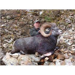 SB-23 Stone Sheep Hunt, British Columbia