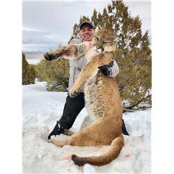 FB-27 Mountain Lion Hunt, Nevada