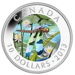 $10 - 2013 Silver Twelve-Spotted Skimmer - Dragonf
