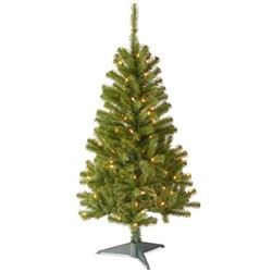 National Tree 4 Foot Canadian Fir Grande Wrapped T