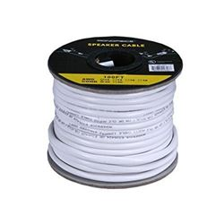 Monoprice 100ft 12AWG CL2 Rated 2-Conductor Loud S