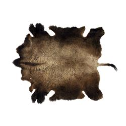 Montana Wild Buffalo Trophy Winter Fur Hide Rug