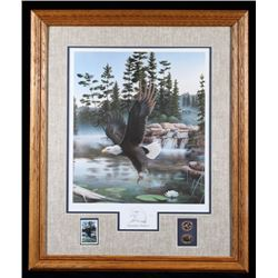 Boundary Waters Eagle Photo