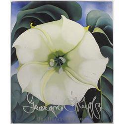 Georgia O'Keeffe One Hundred Flowers, Softback
