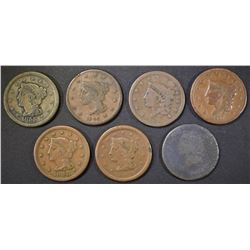 7 LARGE CENTS MOSTLY G-VG