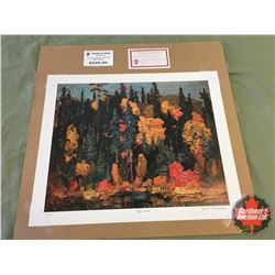 "Limited Edition Prints CHOICE of 5: Group of Seven ""Algoma Bush"" 701/777"