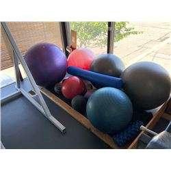 LOT OF ASSORTED EXERCISE BALLS/MEDICINE BALLS, BALANCE PLATFORMS AND MORE