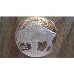 2010 USA Gold Coin