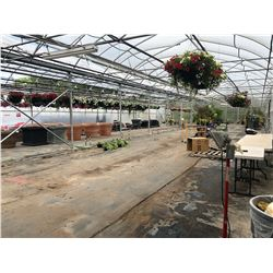 GREENHOUSES 7 & 8: APPROX. 130' X 50' HARNOIS GREENHOUSE BUILDING, APPROX. 16' TALL,  ROOF, END