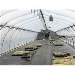 GREENHOUSE 15: 95' X 20' HARNOIS GREENHOUSE, 10' TALL AT PEAK, ONE END WALL ONLY, INCLUDES ATTACHED