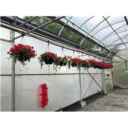 ROW OF APPROX. 10 HANGING BOUQUET BASKETS