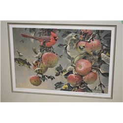"Framed limited edition print ""Cardinal and Wild Apples"" pencil signed by Robert Bateman 10682/12183"