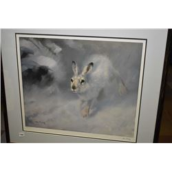 Framed limited edition print of a snowshoe hare pencil signed by artist M. L' ihaz (?) 456/650