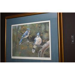 Framed limited edition print of blue jays signed by artist Maurade Baynton, 286/390