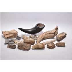 Selection of petrified wood, petrified horn, horn on mount etc.