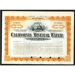 California Mineral Water Co., ca.1910, Specimen Stock.