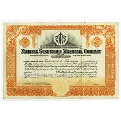 National Suspended Monorail Co., 1920 Issued Stock Certificate