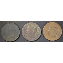 3-LOWER GRADE LARGE CENTS: