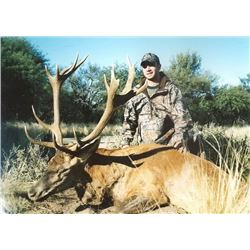 Argentina Red Stag Hunt for 1 hunter and 1 observer WITH MG HUNTING