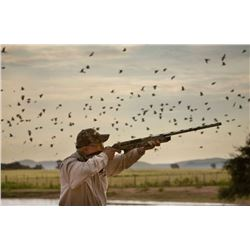 Argentina Dove Hunt 3 day hunting/2 hunters  with Dave Denies2 half days & 2 full days