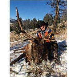 Montana Elk Hunt for the 2019 Season
