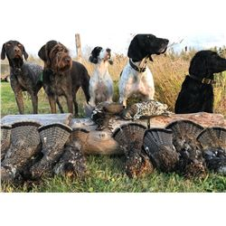 5 day duck and grouse combo hunt over retrievers and pointing dogs.