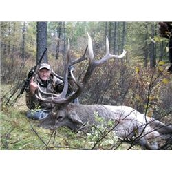 Mongolia Elk Hunt (Altay Wapiti)