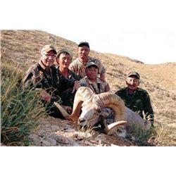 Gobi Argali Hunt in Mongolia